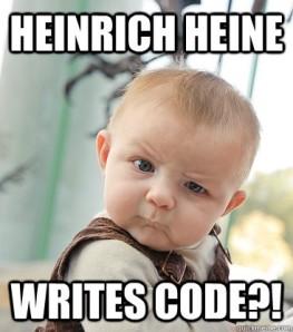 Hiene writes code